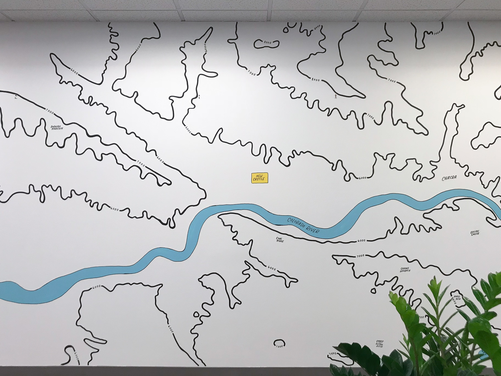 Gusto Denver Colorado River Topographic Map Mural